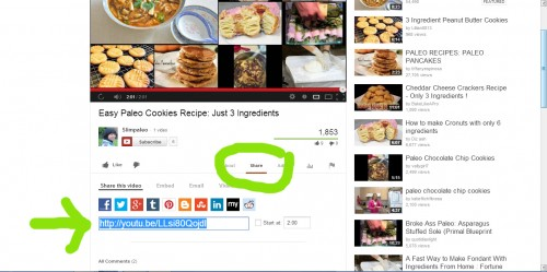 share youtube videos on WordPress